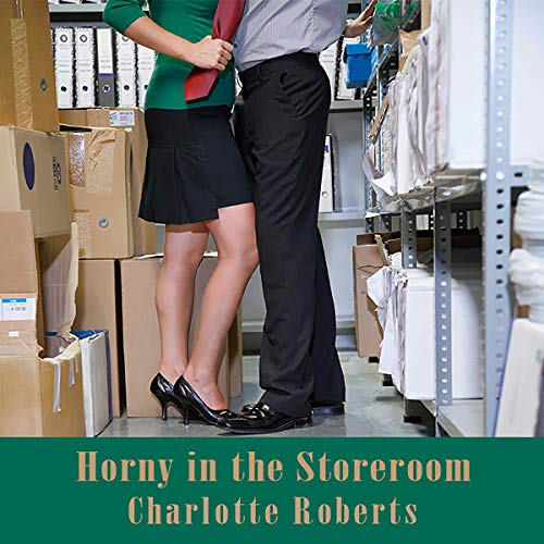 Horny in the Storeroom audiobook cover art