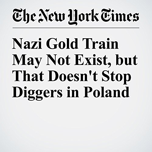 『Nazi Gold Train May Not Exist, but That Doesn't Stop Diggers in Poland』のカバーアート