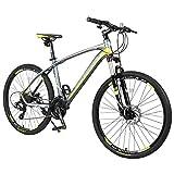 Merax Finiss 26' Aluminum 21 Speed Mg Alloy Wheel Mountain Bike (Classic Gray&Green)