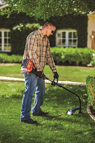 Remington RM2510 Rustler 25cc 2-Cycle 16-Inch Curved Shaft Gas String Trimmer, 16 Inches, Black