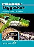 Taggeckos (Praxis Ratgeber)