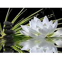 5D Diyダイヤモンド絵画フルラウンドダイヤモンド刺繡花ロータストンボDiyキット装飾ラインストーン装飾,40*50Cm(16*20Inch)