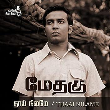 Thaai Nilame