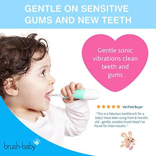 Brosse à dents électrique Brush-Baby BabySonic pour bébés/nourrissons   Stade 2 -...