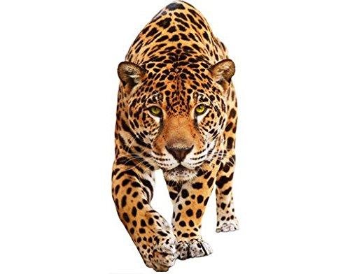 mantiburi Wandtattoo mehrfarbig No.648 Creeping Jaguar 70x148 cm Günstig