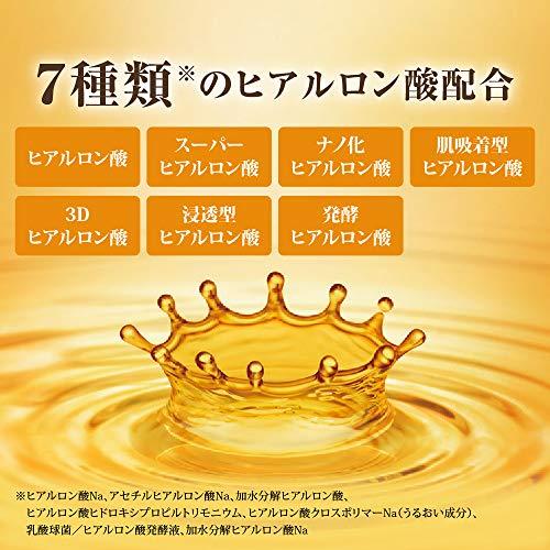 肌ラボ極潤プレミアムヒアルロン液化粧水170ミリリットル(x1)