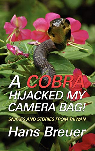 A Cobra Hijacked My Camera Bag! Snakes and Stories from Taiwan