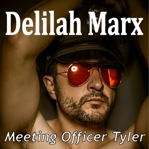 Meeting Officer Tyler audiobook cover art