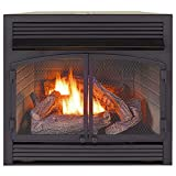 Best Gas Fireplace Inserts - ProCom Dual Fuel Ventless Gas Fireplace Insert Review