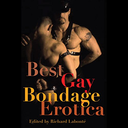 Best Gay Bondage Erotica cover art