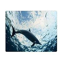 iPad 9.7 ケース 2018と2017年モデル 軽量 薄型 レザー 海の動物の装飾、海洋海洋水中水生野生生物のテーマのバンドウイルカのうんち、ブルーグレー オートスリープ機能 スマートカバー 2017年と2018年発売の9.7インチ iPad 対応