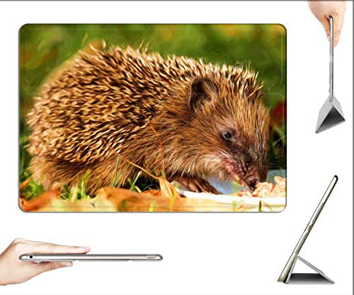 Case for iPad Pro 12.9 inch 2020 & 2018 - Painting Oil Painting Photo Painting Hedgehog 1