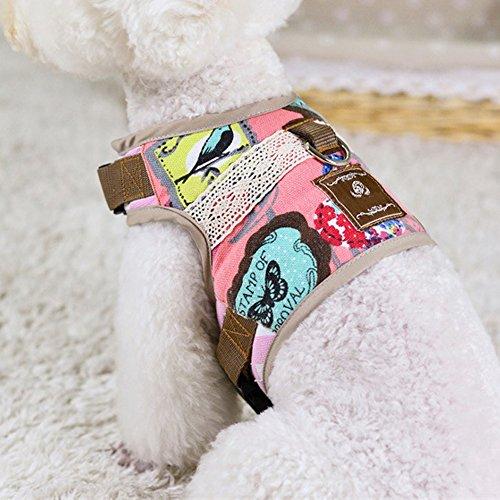 Pet Club Best Walking Dog Harness