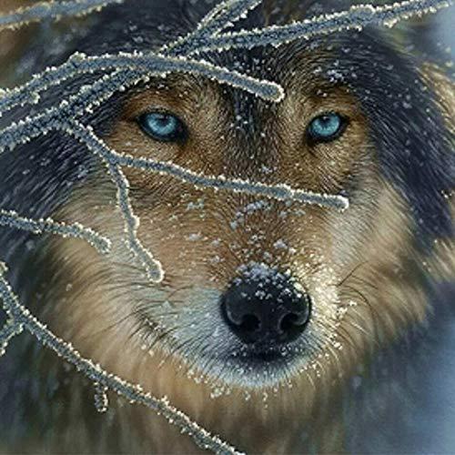 Fairylove 30×30 Diamond Painting Full Diamond Bead Painting Diamond Art Kits for Adults Full,Wolf in the Snow Day