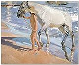 Joaquín Sorolla The Horse's Bath - Kit de pintura al óleo DIY, kit de pintura por números para niños y adultos - Arte de la pared de la lona Decoración del hogar 16 X 20 pulgadas (Sin marco)