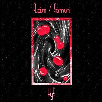 Fludium / Somnium