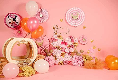 Fondos de fotografía de cumpleaños 1st Baby Shower Cake Smash Photo Background Niños Recién Nacidos Interiores Estudio PhotocallsA43x3m