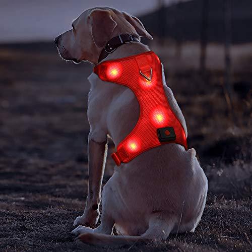 Klein Rot Wiederaufladbare USB LED Hundegeschirr Beleuchtetes Hundegeschirr Leuchtend Aufladbar Licht Hunde Weste LED Hund Geschirr LED Hundegeschirr Sicherheitsgeschirr Hund LED Hunde Zubehör