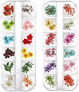 Teenior 24 Colors Nail Dried Flowers, 3d Nail Art Sticker for Tips Manicure Decor Mixed Accessories, Starry Leaves Flower (2 Boxes)