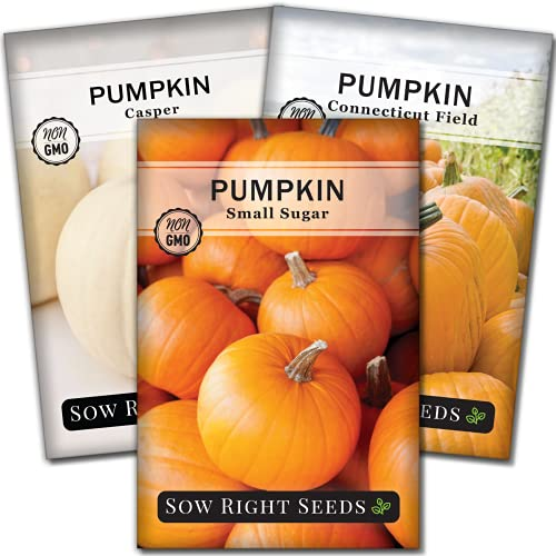 Sow Right Seeds - Pumpkin Seed Collection for Planting - Small Sugar,...