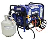Ford, 11050W Dual Fuel Portable Switch & Go Technology and Electric Start FG11050PBE-A Generator, Blue