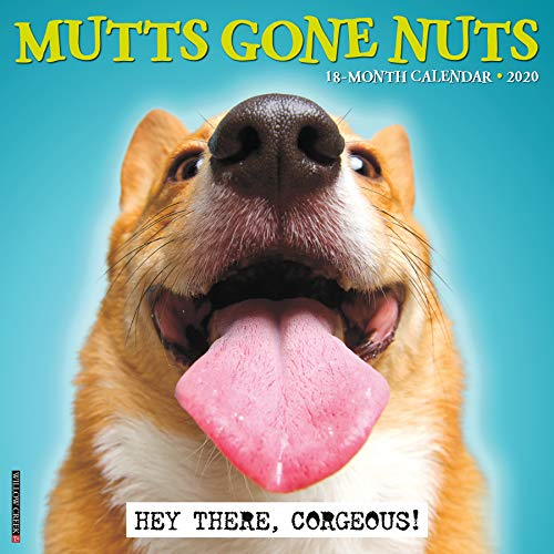 Mutts Gone Nuts 2020 Wall Calendar