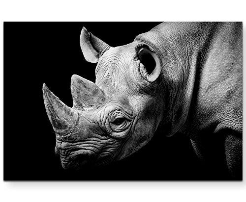 Paul Sinus Art Leinwandbilder | Bilder Leinwand 120x80cm Portrait Eines Nashorns schwarzweiß