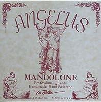 ANGELUS MANDOLONE マンドローネ弦セット