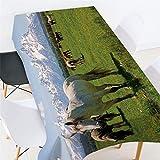 Morbuy Manteles Antimanchas Rectangular, 3D Impresión Manteles de Mesa Cuadrada Impermeable Prueba de Polvo Lavable Mantel para Hogar Cocina Salón Jardín o Comedor (Caballo de la Pradera,150x300cm)