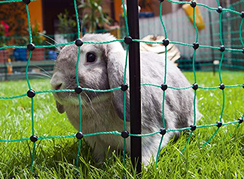 AKO Kleintier Elektronetz grün 65cm, Marder, Teichschutz, Einzelspitze - 50m - Kaninchen, Katzen, Marder, Reiher, Otter - Universell einsetzbar für alle Kleintiere