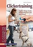 Clickertraining: Andere Wege in der Kommunikation mit dem Hund
