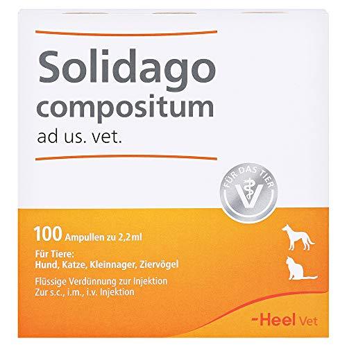 solidago compositum ampullen vet. 100 St