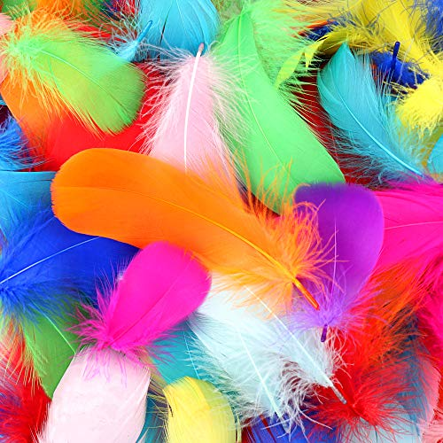 HaiMay 450 Pieces Colorful Feathers for Craft Wedding Home Party Decorations, 3-5 Inches 10 Colors Craft Feathers