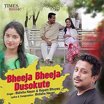 Bheeja Bheeja Dusokute - Single