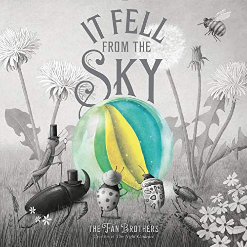 It Fell from the Sky (English Edition)