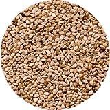 Semillas de sésamo de cultivo Ecológica | Frutos Secos a granel gran formato ahorro | BIO | Samskara (25)