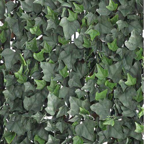 Verdemax 5636 50 x 50 cm Verdecor Haag met bladeren als Ivy