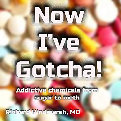 Now I've Gotcha!: Addictive Chemicals from Sugar to Meth audiobook cover art