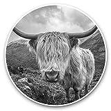 Impresionantes pegatinas de vinilo (juego de 2) 25 cm bw – Wild Highland Cow Yak Animal Fun Decals para portátiles, tabletas, equipaje, reserva de chatarras, frigoríficos, regalo genial #36549