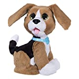 Fur Real Friends- Peluche, B9070,