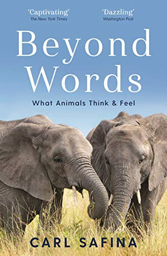 Safina, C: Beyond Words: What Animals Think and Feel