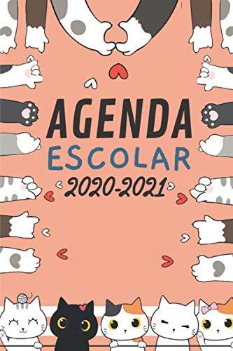 Agenda Escolar 2020-2021: Agenda Gatos | primaria Colegio...