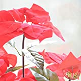 LED Weihnachtsstern beleuchtet Batterie Blumentopf Kunstpflanze Blume 43cm Licht Lichter Kunstblume Kunstpflanze Leuchte Tisch Dekoration Deko - 3