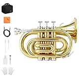 Eastar Pocket Trumpet B Flat Brass Bb Pocket Trumpet with Valve Oil, Mouthpiece 7C, Cleaning Cloth, Hard Case, Gloves, Full Kit, Gold Lacquer, ETR-330
