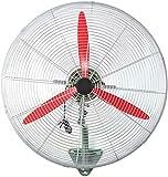 Byakns Muro de Negocios con Ventilador eléctrico del Ventilador, 22/27/31 Pulgadas |mecánica |Ventilador de Pared |de Metales |Cabeza de la Sacudida, oscilando (Size : 68CM(27)