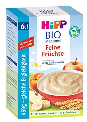 Hipp Bio-Milchbrei Feine Früchte, 2er Pack (2 x 450g)