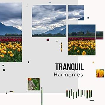 # 1 Album: Tranquil Harmonies