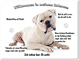 Merchandise for Fans Blechschild/Warnschild/Türschild - Aluminium - 15x20cm - - Willkommen in Meinem Zuhause - Motiv: American Bulldog - 04