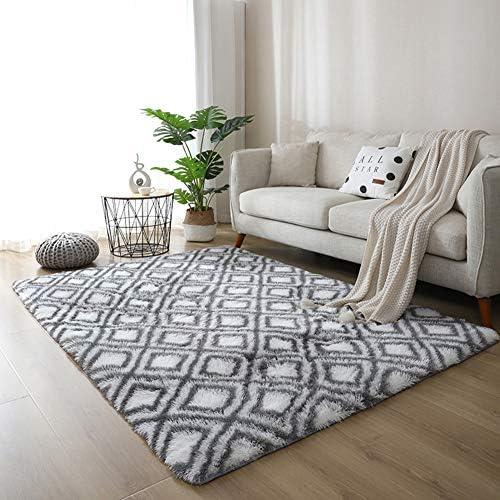 Eanpet Soft Decortive Area Rug 5 x7 Multi Color Non silp Shag Carpets for Kids Living Room Bedroom product image