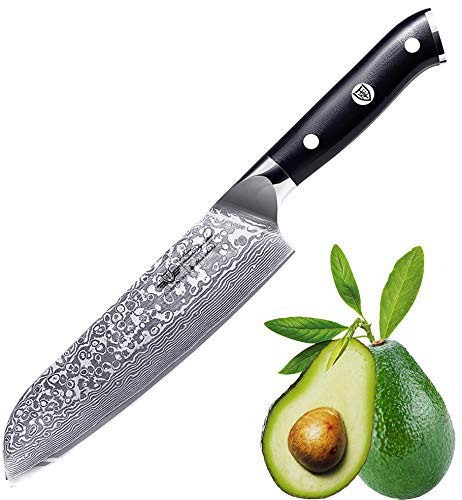 Kitchen Emperor Damascus Chef Knife 8 inch,67 Layers Damascus Steel Kitchen Knife with G10 Handle
